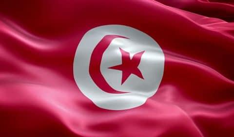 La liberté de gestion en droit fiscal: étude comparée Tunisie – France